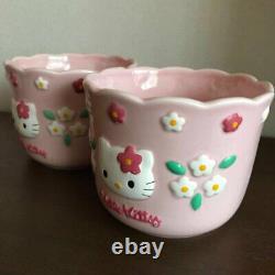 Hello Kitty Flower Kitty Flowerpot Flower Pot Planter Two set 1997 Sanrio Retro