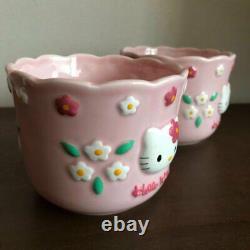 Bonjour Kitty Flower Kitty Flowerpot Flower Pot Planter Deux Ensemble 1997 Sanrio Retro